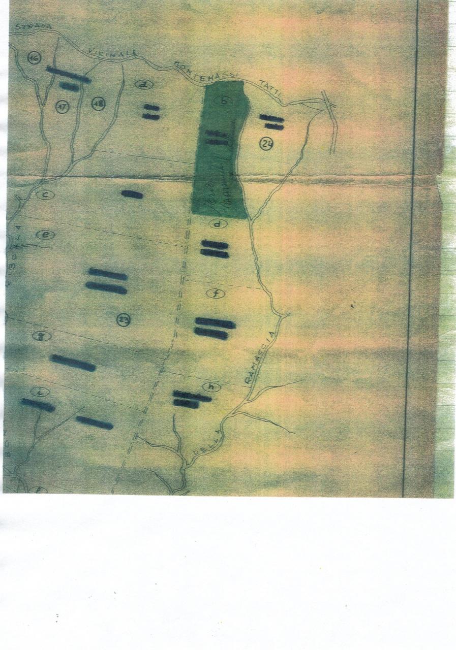 terreno agricolo vendita roccastrada montemassi