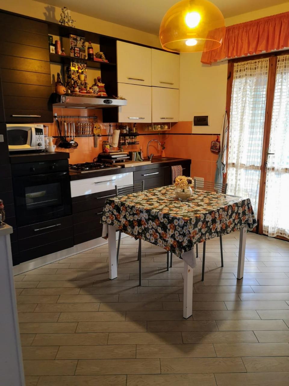 appartamento vendita roccastrada ribolla